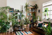 5 نکته مهم در مراقبت از گیاهان آپارتمانی