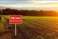 7 دلیل برای خرید زمین جهت سرمایه گذاری